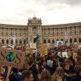 Die internationale Aktionswoche #WeekForFuture begann mit einem grandiosen Erfolg. Weltweit gingen schon am 20. September, dem ersten der beiden Tage des Generalstreiks für das Klima, Millionen auf die Straße. In […]