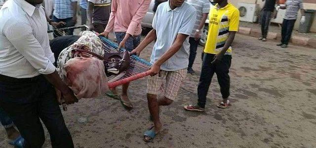 Das Blutvergießen in Khartum am Montag, den 3. Juni, beweist wieder einmal, dass elementare demokratische Rechte für die Regime in den meisten Staaten des Nahen Ostens und Nordafrikas unerträglich sind. […]